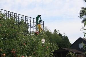 Terrassenfigur in Rommersberg