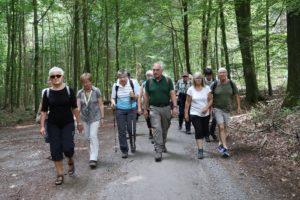 Wanderung mit dem Förster im Stadtwald von Bad Salzuflen