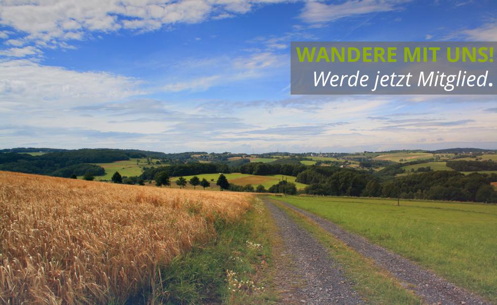 landschaft_slider